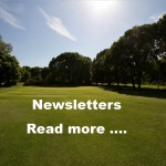 Ladies Newsletters Website